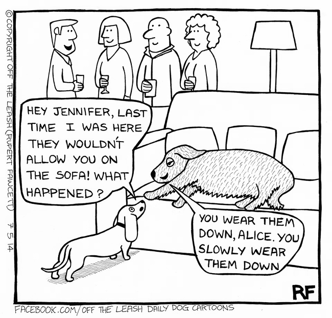 Jennifer's Advice - Off The Leash Dog Cartoons by Rupert Fawcett