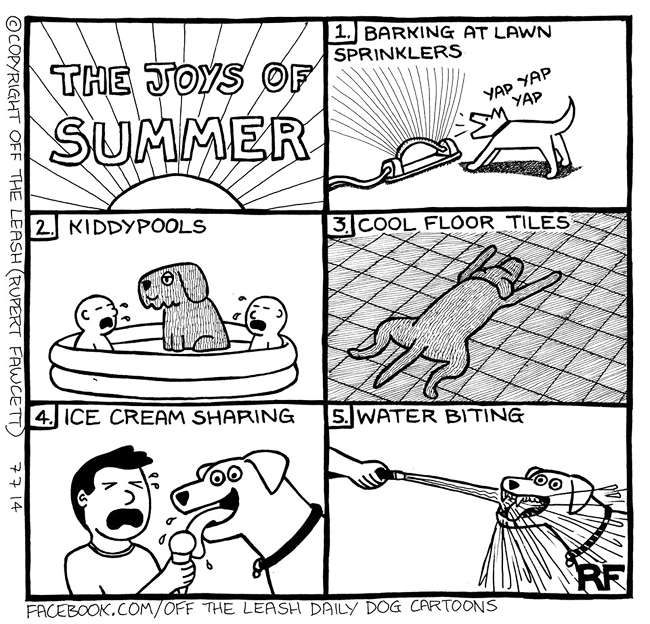 The Joys Of Summer - Off The Leash Cartoons by Rupert Fawcett