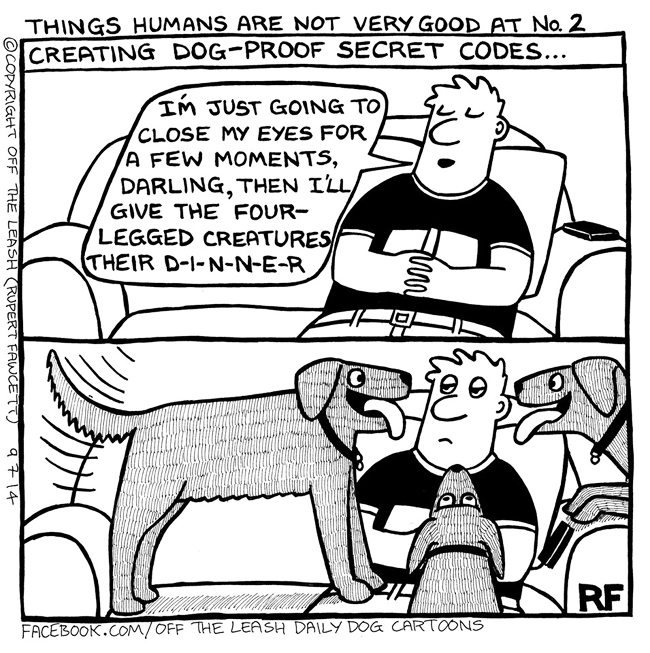 Things Humans Are Not Very Good At No 2 - Off The Leash Dog Cartoons by Rupert Fawcett