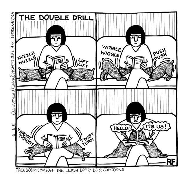 Double Drill