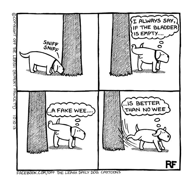 Bmw R Dog