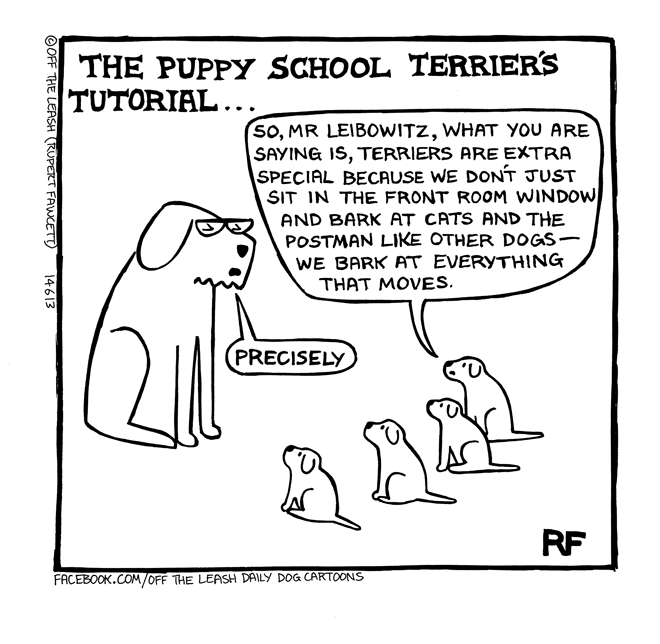 Off The Leash - Puppy School