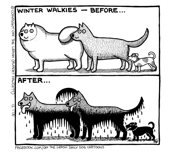 © 2014 Rupert Fawcett / Off The Leash Dog Cartoons Winter Walkies