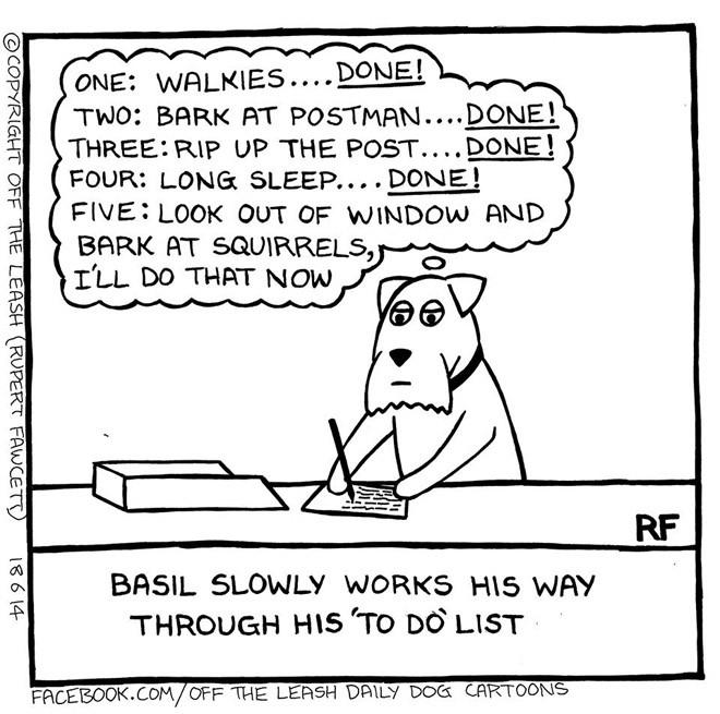 Off The Leash - Basil's To Do list
