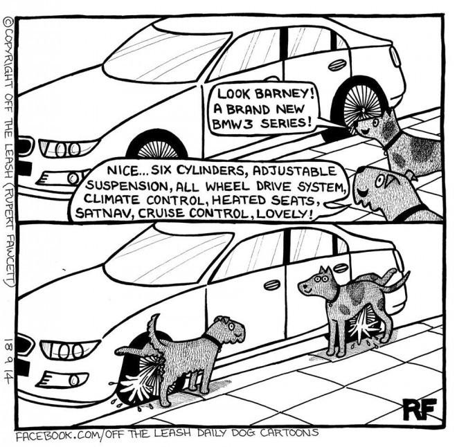 Off The Leash - Nice Car