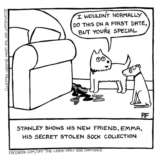 First Date - Socks, Off The Leash Dog Cartoons by Rupert Fawcett