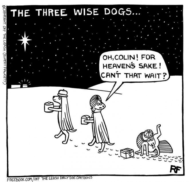 The Three Wise Dogs