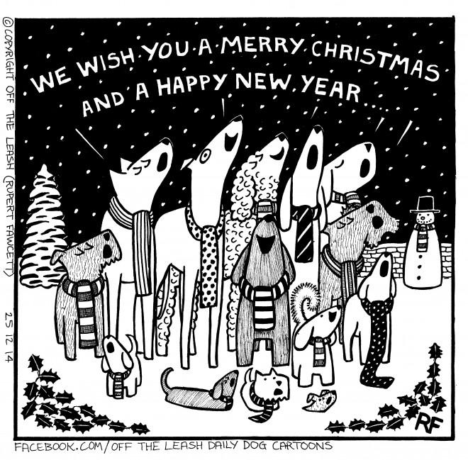 Merry Christmas Singers