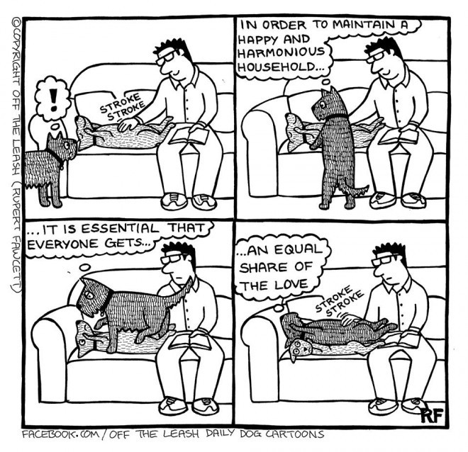 Essentials of a Happy Home - Off The Leash Dog Cartoons by Rupert Fawcett