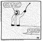 Snowstorm Walkies
