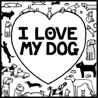 Special Dog Forum - Off The Leash