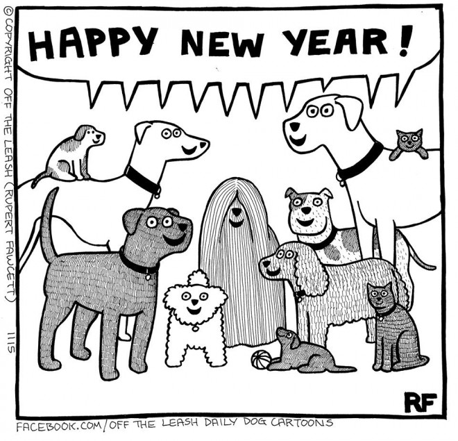 Me Gusta Funnies Happy New Year 2014: Off The Leash Dog Cartoons
