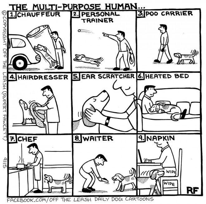 The Multi-Purpose Human