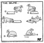 The Selfie