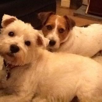 Poppy & Rosie ❤️❤️