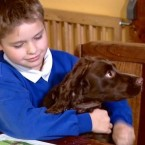 In Dogs We Trust BBC Scotland