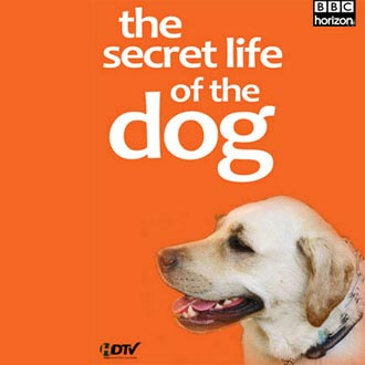 Secret Lives of Dogs BBC