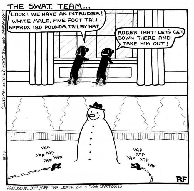 The SWAT Team