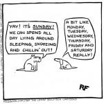 Yay! It's Sunday!