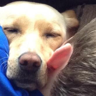 L❤️ve a good snuggle