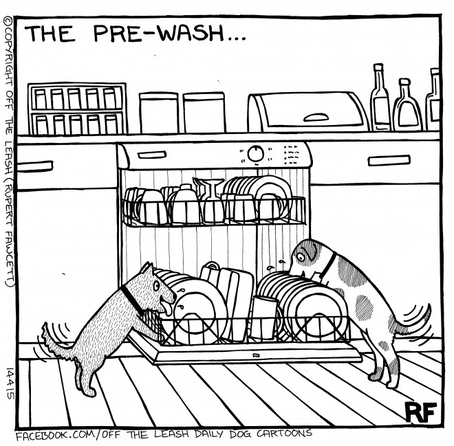 © Off The Leash Dog Cartoons / Rupert Fawcett The Pre Wash