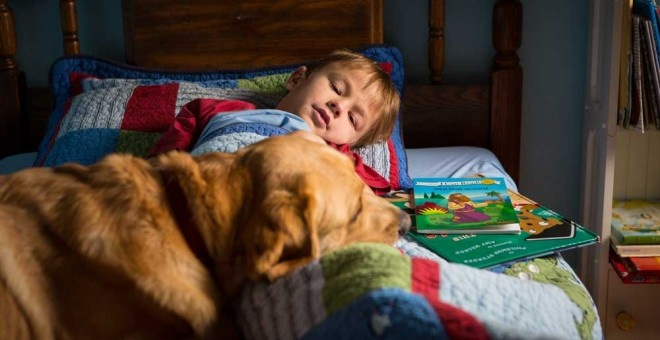 5 Assistance Dogs Changing The Lives of Kids With Autism