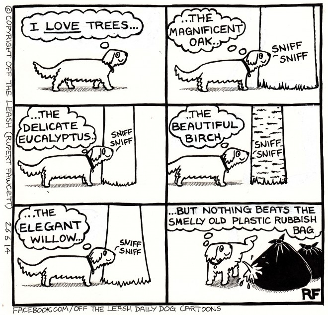 © Off The Leash Dog Cartoons / Rupert Fawcett Saturday Walkies