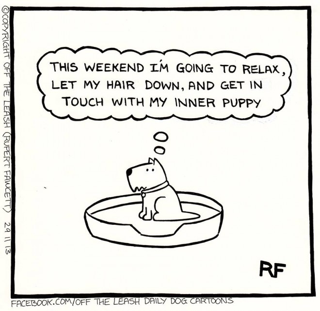 © 2014 Rupert Fawcett / Off The Leash Dog Cartoons This Weekend!